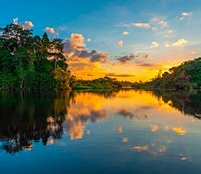 paquetes/Amazonas - Reservas naturales